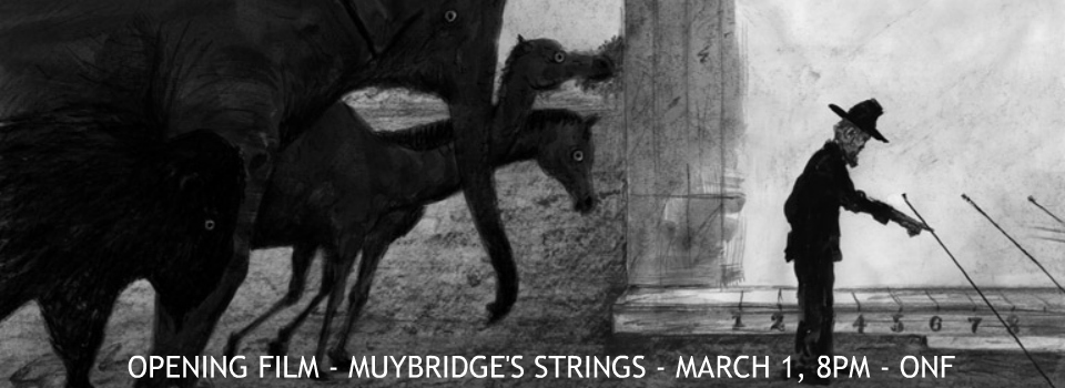 MUYBRIDGE'S STRINGS